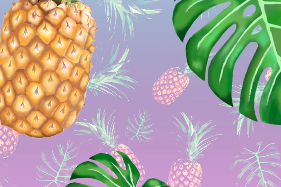 Cheese Plant & Pineapples